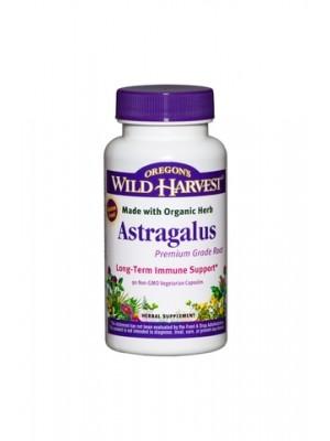 Premium Astragalus (Organic) by Oregon's Wild Harvest
